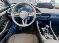 autosincro-8411240
