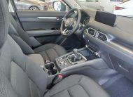autosincro-8411245