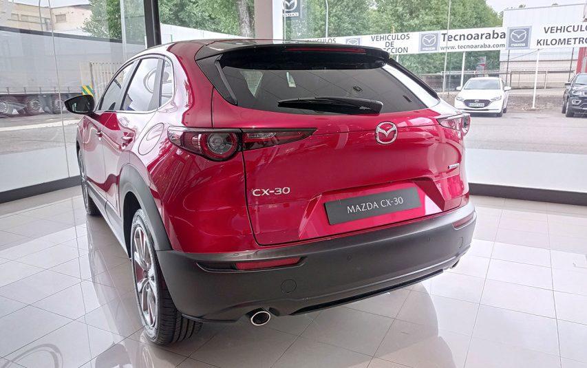 autosincro-8507946