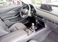 autosincro-8590859